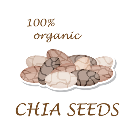 Chia seeds. Organic ingredient. Healthy eco food. Sticker isolated on white background. Vector illustration.