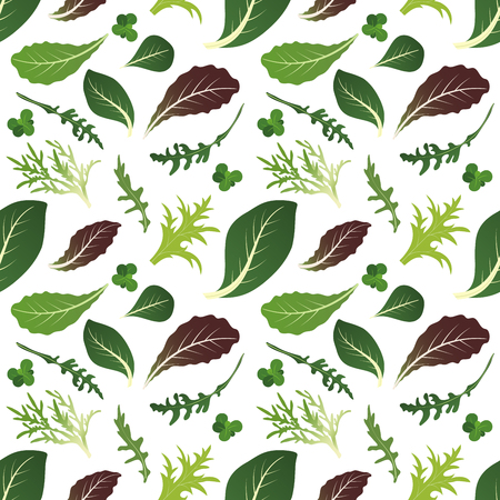 Mix of salad leaves. Arugula, spinach, lettuce leaf, watercress and radicchio. Seamless pattern. Vector illustration Stock Vector - 127273148