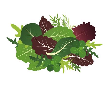 Mieszanka liści sałaty. Rukola, szpinak i liść sałaty. Ilustracja wektorowa w stylu płaski