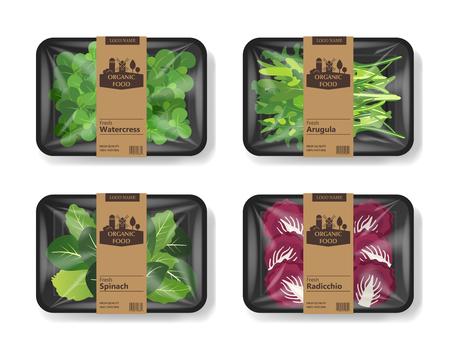 Salatblätter mit Plastikschalenbehälter mit Zellophandeckel. Retro-Design-Set. Modellvorlage für Ihr Salatdesign. Lebensmittelbehälter aus Kunststoff. Vektor-Illustration
