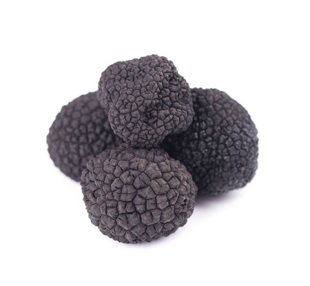 Black truffles isolated on a white background. Delicacy exclusive truffle mushroom. Piquant and fragrant French delicacy. Clipping path