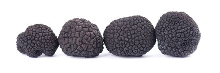 Black truffles isolated on a white background. Delicacy exclusive truffle mushroom. Piquant and fragrant French delicacy. Stok Fotoğraf