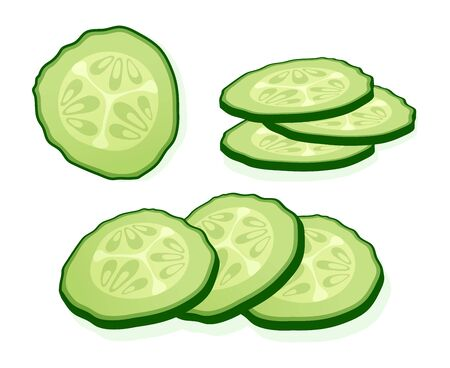 Fresh cucumber sliced slices isolated on white background. Green round piece of cucumber. Vector Illustration