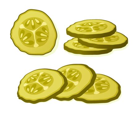 Pickled cucumber slice isolated on white background. Marinated pickled cucumber isolated. Vector Illustration Vektorové ilustrace