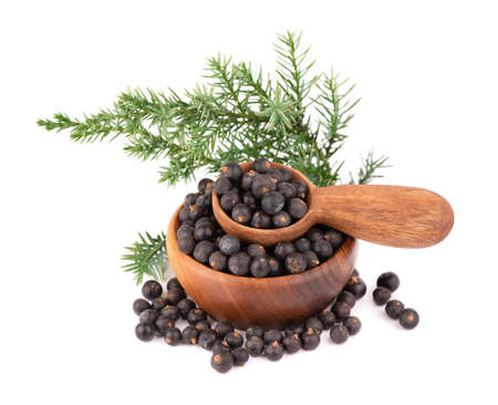 Dry juniper berries with a green branch, isolated on white background. Common Juniper fruits in wooden bowl and spoon
