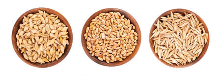 Wheat, oat and barley grains in wooden bowl, isolated on white background. Processed organic dry seeds set. Top view