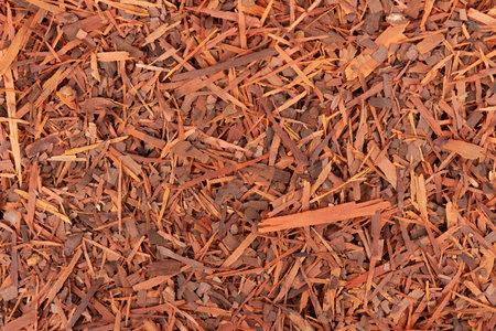 Lapacho herbal tea background. Natural Taheeboo dry tea. Pau darco herb. Tabebuia heptophylla.
