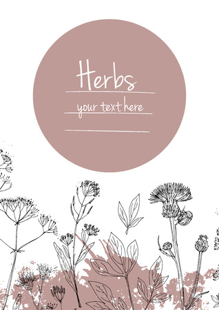 spring summer: Herbs and flowers painted black line. Space for text. Vector drawing. Template with a sketch of herbs.