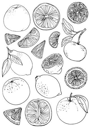 Lemons, oranges, mandarin