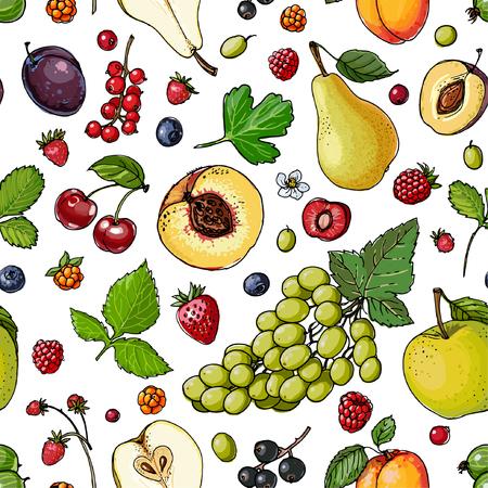 Watermelon, cantaloupe, pomegranate, apricot, persimmon line dra