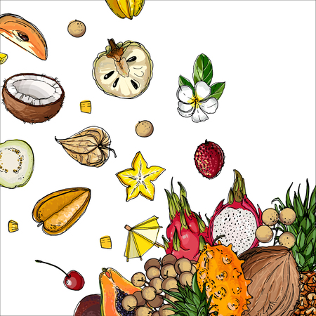 Flying exotic fruits on a white background Stock Illustratie
