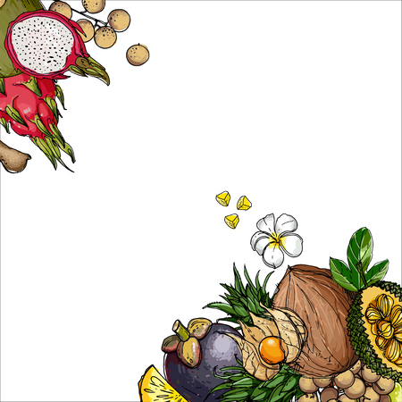 Flying exotic fruits on a white background Illustration