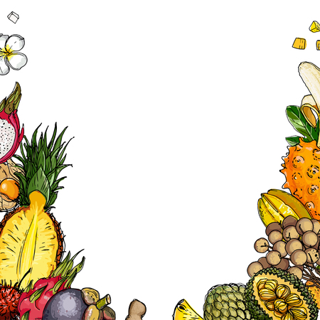 Fruits drawn by a line on a white background