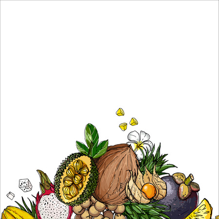 Exotic fruits on a white background Stock Illustratie