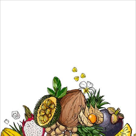 Exotic fruits on a white background Illustration