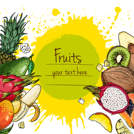 Fruits drawn a color line on a white background