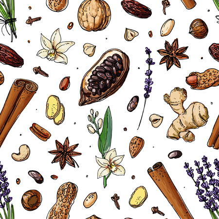 Pattern Nuts and spices line drawn on a white background