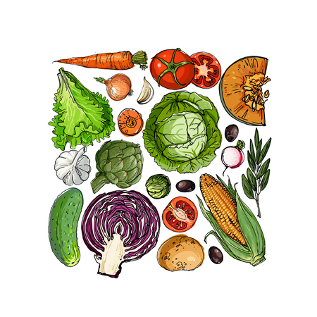 Square of colored vegetables.  Fresh food Illustration