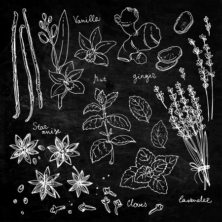 Herb drawn white lines on a black background Stock Illustratie
