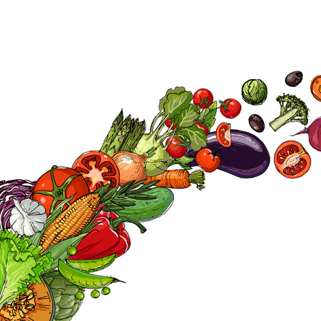 Vegetables. Fresh food. Pumpkin, artichokes, beets, asparagus, corn, garlic, tomato line drawn on a white background. Vector illustration. Stockfoto - 102050351