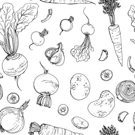 The pattern of painted colored vegetables line drawn on a white background. Skertch autumn harvest. Fresh food.