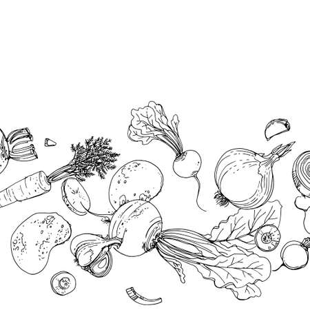 Vegetables. Fresh food. Beets, radishes, carrots, onions, garlic, potatoes line drawn on a white background. Vector illustration.