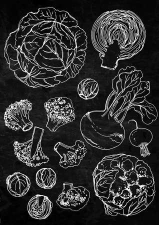 Set of vegetables. Fresh food. Cabbage, Blockley, kohlrabi, cauliflower, Brussels sprouts line drawn on a black background. Vector illustration. Coloring for adults Stock Illustratie