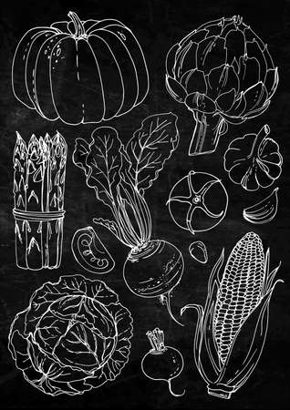 Set of vegetables. Fresh food. Pumpkin, artichokes, beets, asparagus, corn, garlic, tomato line drawn on a white background. Vector illustration. Coloring for adults Stock Illustratie