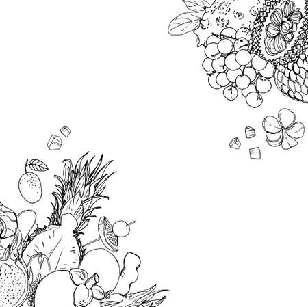 Flying exotic fruits on a white background. A sketch of food. Coconut, Physalis, mangosteen, pineapple, banana, jackfruit Illustration