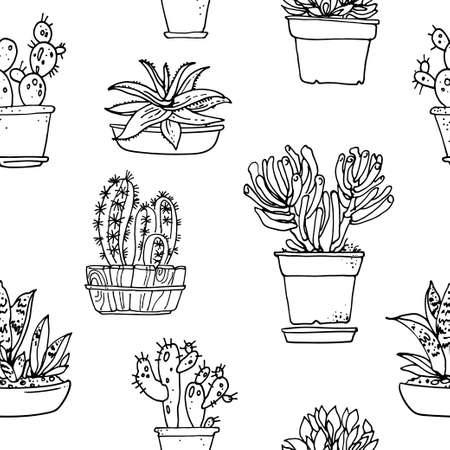 Pattern flowers in pots painted black line on a white background. Vector drawing lines 矢量图像