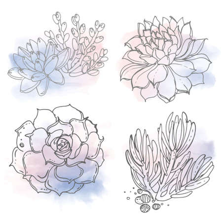 Cacti and succulents painted a white line on a watercolor background. Vector sketch of indoor plants. Color rose quartz, serenity.