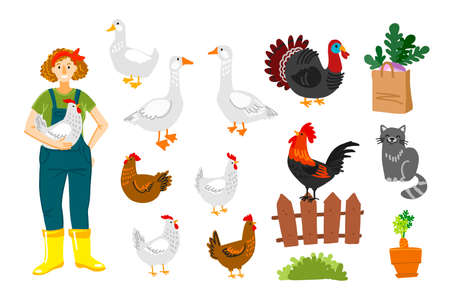 Happy farmer holding a chicken. Domestic bird. Chicken, cock, turkey, geese, duck. Vector drawing. 矢量图像