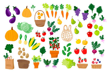 Local food, vegetables and fruits. Vector drawing. Zero packing 矢量图像