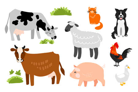 Livestock and pets on the farm. Cows, dog, cat, pig, sheep, duck, rooster. Vector drawing. 矢量图像