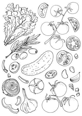 Set of vegetables. Fresh food. Lettuce, tomatoes, cucumber, olives, garlic line drawn on a white background. Vector illustration. Coloring for adults 向量圖像