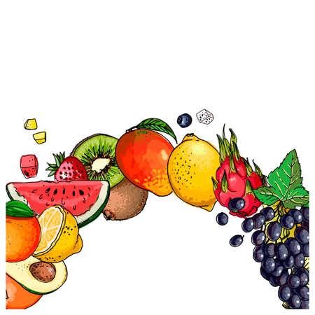 Fresh food. Watermelon, cantaloupe, pomegranate, apricot, persimmon line drawn on a white background. Vector illustration. Vector Illustratie
