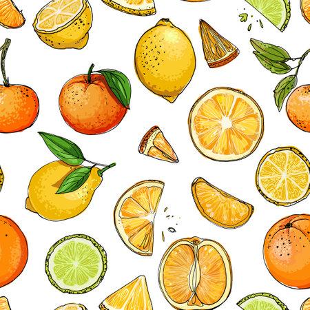 Pattern. Citrus. Set of fruit. Fresh food. Lemons, oranges, mandarin, pomelo, lime. Vector illustration. Vector Illustratie