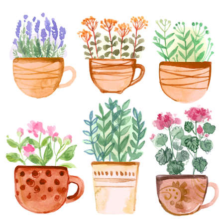 Flowers and herbs in ceramic pots in watercolor on a white background. Italian spices. Decor for garden and home. Watercolor