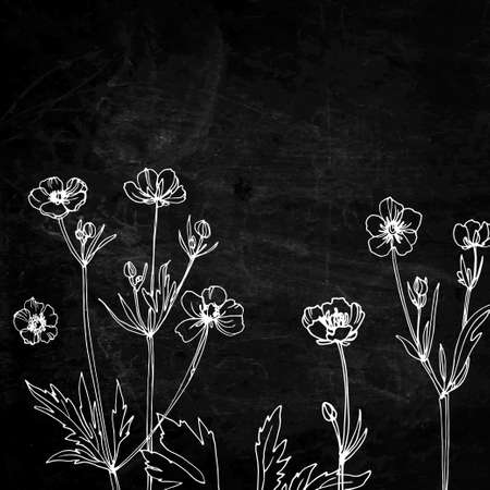 Flowers and herbs in a line on a black background. Slate texture