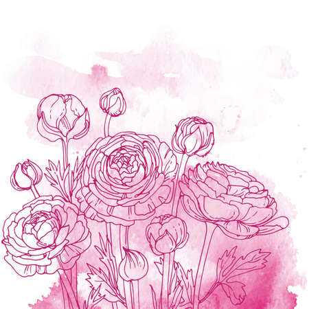 Flowers and herbs line on watercolor background color