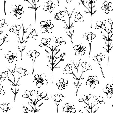 Flower pattern Vector sketch of flowers by line on a white background.