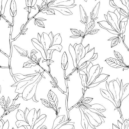 Flower pattern Magnolia. Vector sketch of flowers by line on a white background. 免版税图像