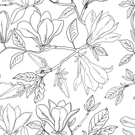 Flower pattern Magnolia. Vector sketch of flowers by line on a white background. 矢量图像