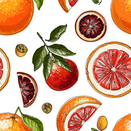 Pattern with citrus fruits orange. Vector food sketch. Exotic food drawings