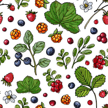 Seampless pattern vector color food. Garden and forest berries
