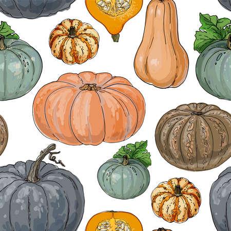 Seamless pattern vector vegetable food. Orange And Gray Pumpkin. autumn ornament