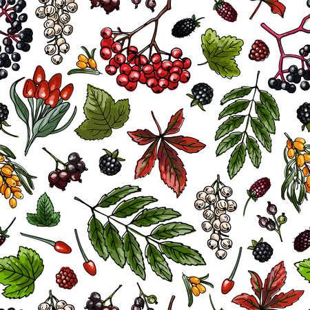 Berries seamless pattern vector color food. 免版税图像