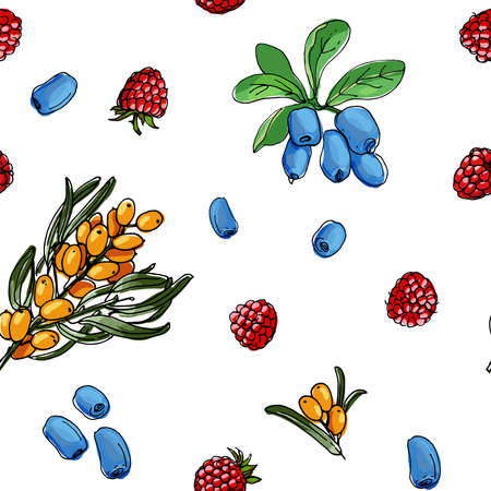 Seamless berries pattern vector color food. Wild strawberry, wild strawberry