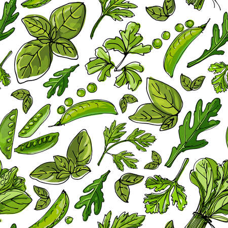 Seamless pattern vector color food. White beans, green beans, soybeans, green peas. 矢量图像