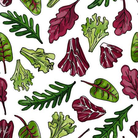 Seamless pattern vector color food. Iceberg lettuce, romano, chard, lettuce, arugula, radichio 矢量图像